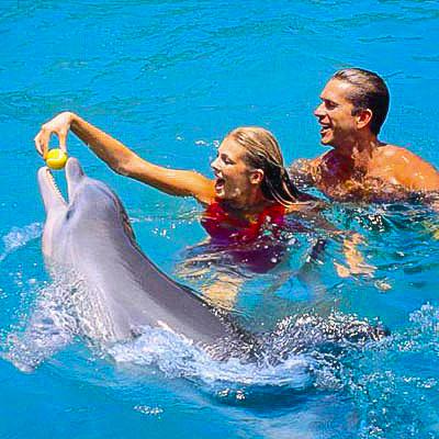 Photo of Seafari to Cayo Blanco excursion